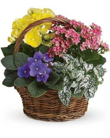 Basket of Blooms Small